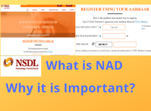 What is NAD & Why it is Important